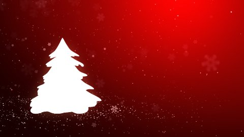 The Christmas tree_045 - stock footage