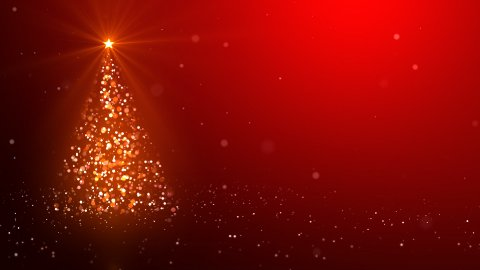 The Christmas tree_043