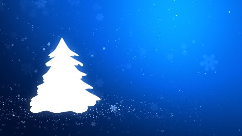The Christmas tree_046 - stock footage