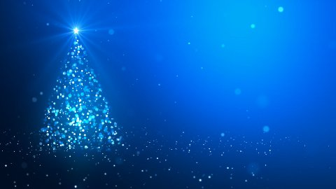The Christmas tree_041 - stock footage