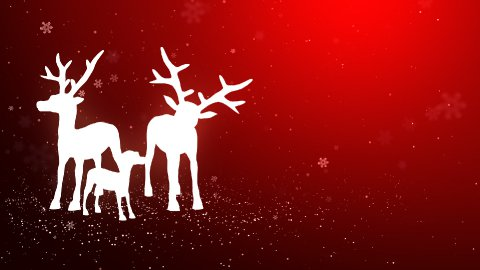 Reindeer station in the snow_047 - stock footage