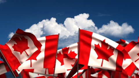 Waving Canadian Flags - stock footage