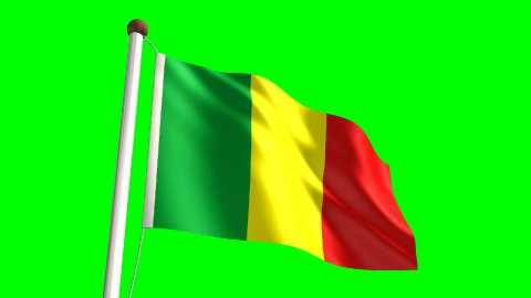 Mali flag - stock footage