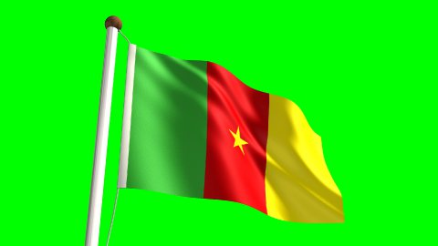 Cameroon flag - stock footage