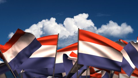 Waving Dutch Flags - stock footage