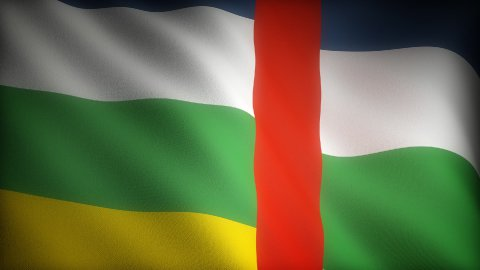 Flag of Central Africa - stock footage
