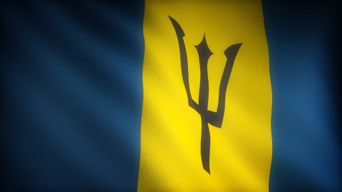 Flag of Barbados - stock footage