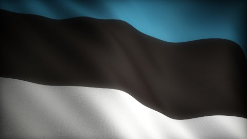 Flag of Estonia - stock footage