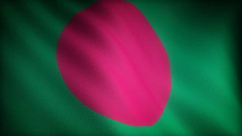 Flag of Bangladesh - stock footage