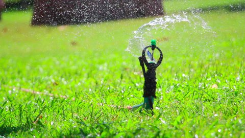 water jet sprinkling green grass close-up - stock footage