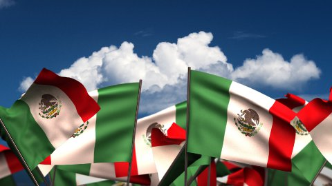 Waving Mexican Flags - stock footage