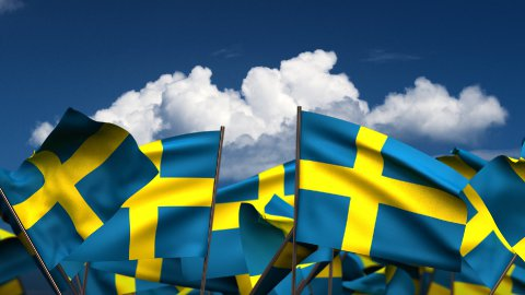 Waving Swedish Flags  - stock footage