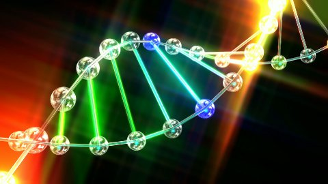 Animation of the DNA Double Helix - stock footage