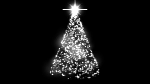 Rotating Christmas Tree Animation - Loop White - stock footage