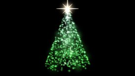 Rotating Christmas Tree Animation - Loop Green - motion graphic