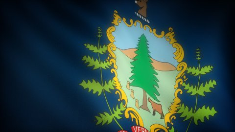 Flag of Vermont - stock footage
