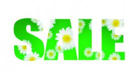 Sale Spring Summer Daisy (Loop) - motion graphic