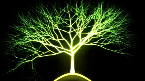 Tree of Light Particles - Green - stock footage