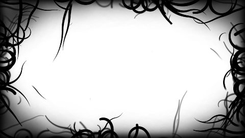 Black Vines Border Background Animation - Loop White - stock footage