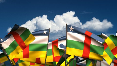 Waving Central African Flags - stock footage