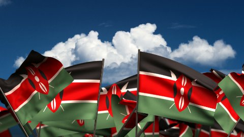 Waving Kenyan Flags - stock footage
