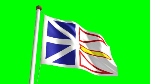Newfoundland flag - stock footage