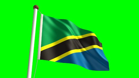 Tanzanian flag - stock footage
