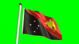Papua New Guiena flag - motion graphic