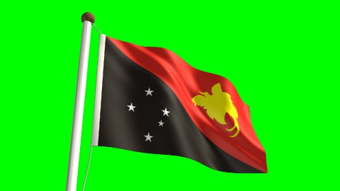 Papua New Guiena flag - stock footage