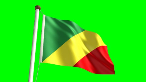Congolese flag - stock footage
