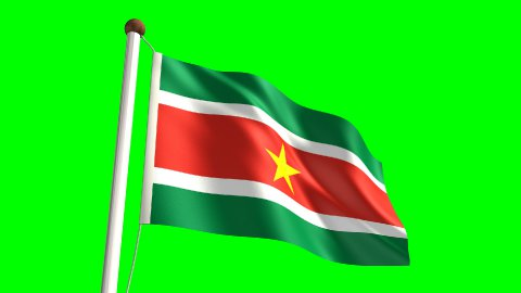 Surinamese flag - stock footage