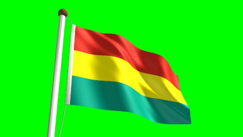 Bolivian flag - stock footage