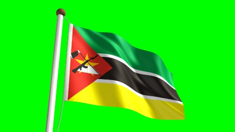 Mozambique flag - stock footage