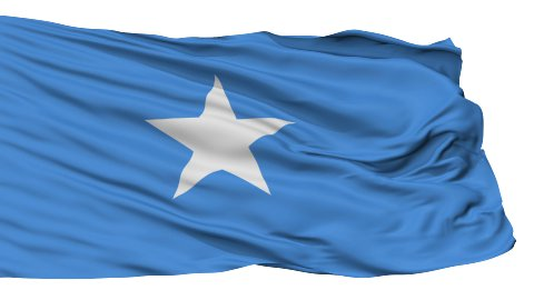Isolated Waving National Flag of Somali - stock footage