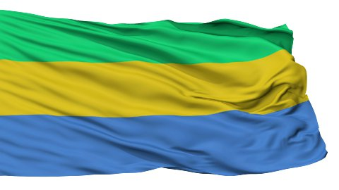 Isolated Waving National Flag of Gabon - stock footage