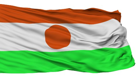 Isolated Waving National Flag of Niger - stock footage