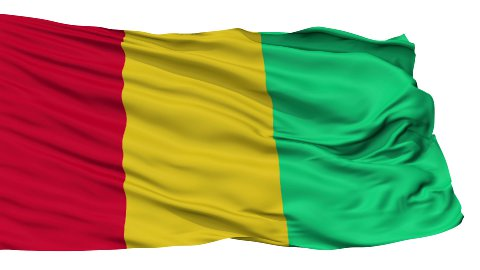 Isolated Waving National Flag of Guinea - stock footage