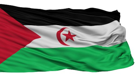 Isolated Waving National Flag of Western Sahara - stock footage