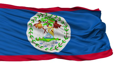 Isolated Waving National Flag of Belize - stock footage