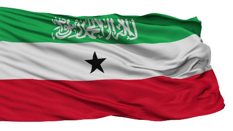 Isolated Waving National Flag of Somaliland - stock footage