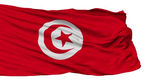 Isolated Waving National Flag of Tunisia - stock footage
