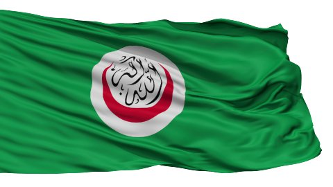 Isolated Flag Organisation of Islamic Cooperation - stock footage