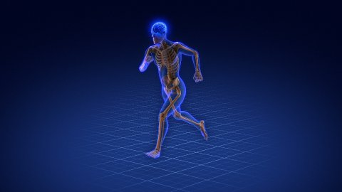 Running skeleton.  - stock footage