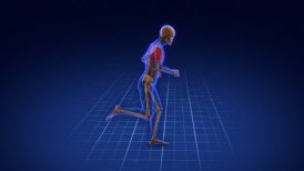 Running skeleton.  - motion graphic