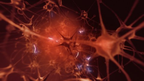 Neurons - stock footage