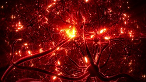 Neurons, brainstorm, seamless loop, red version. - stock footage