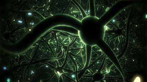 Neurons, brainstorm, seamless loop, green version. - stock footage