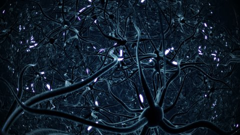 Neurons, brainstorm, seamless loop, blue version. - stock footage