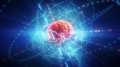 Human brain in cyberspace.