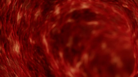 4K blood cells - stock footage